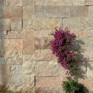 Wall: Scorza