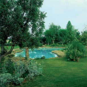 """Pool Coping: Genius """"Water"""" Cava Palladiana"""